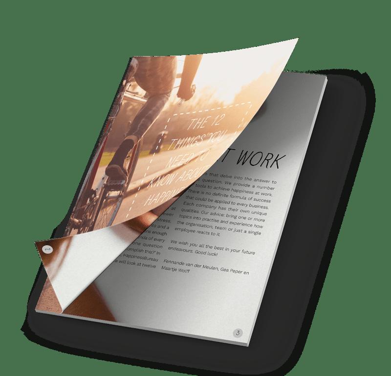 gratis ebook werkgeluk