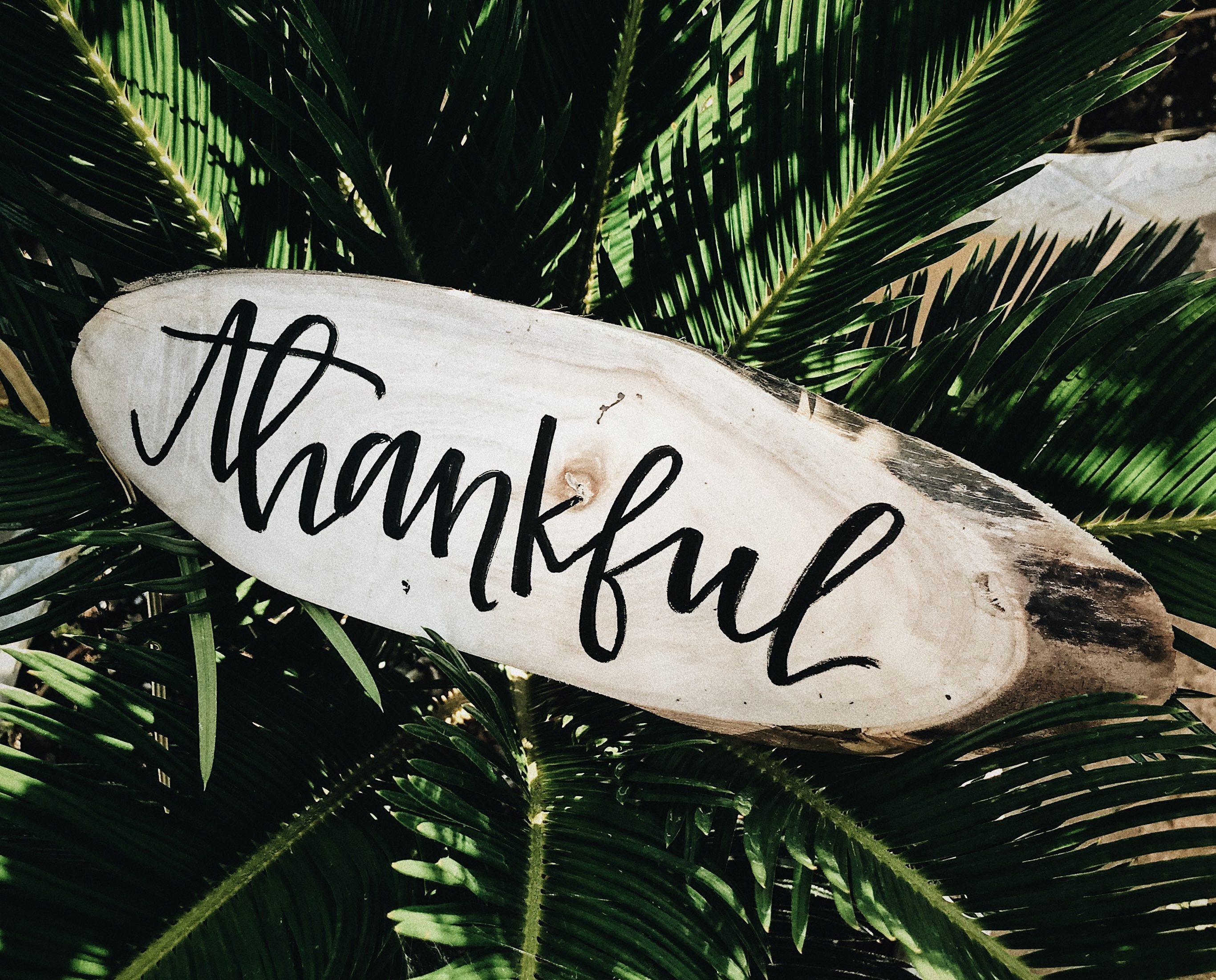 Stop alsjeblieft met dat dankbaarheidsgedoe